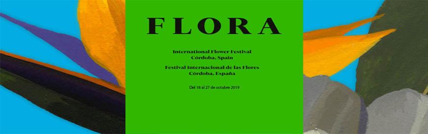 Cuidadores de patios y Colectivo Flor Motion, Dos formas de arte: los patios populares y FLORA