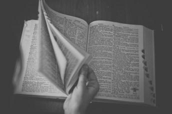 dictionary-698538