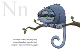 N is for Night Monkey