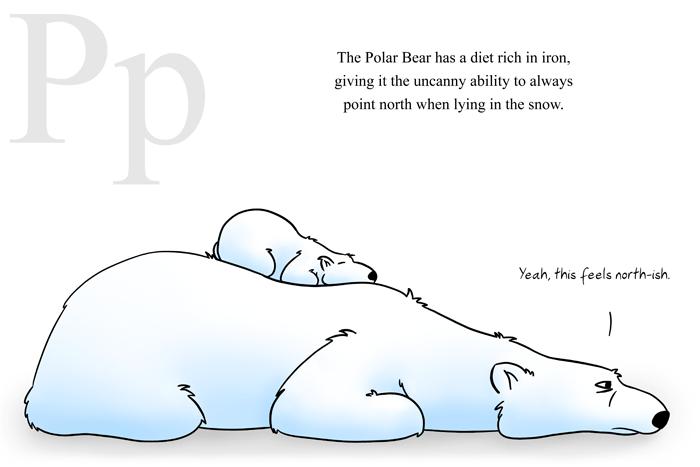 P is for Polar Bear