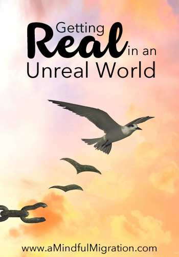 Getting Real in an Unreal World: We live in an unreal world where we project false, perfect lives that damage our psyches. I'm not going to pretend any longer. I'm just going to be me.