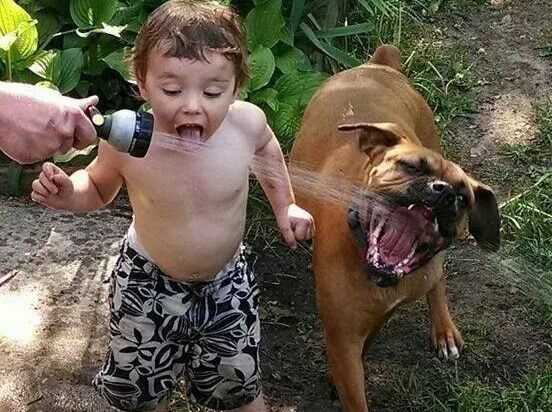 Boy and dog drinking together from a water hose meme