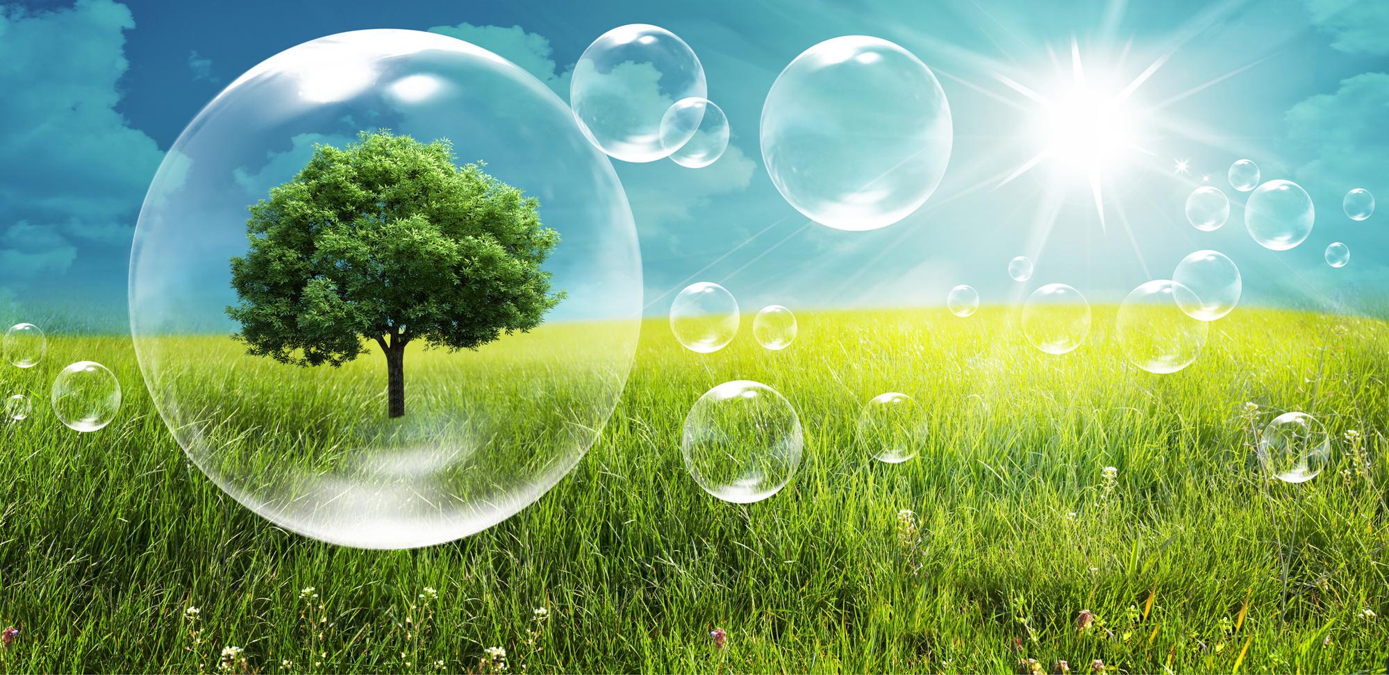 Comment l'environnement affecte votre santé