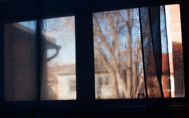 Window_s