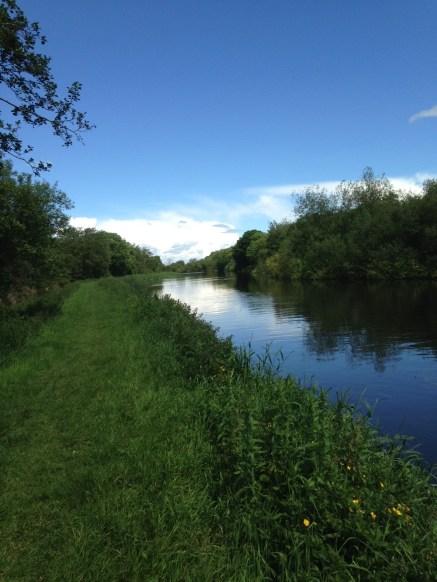 Ciel bleu le long de Carlow River