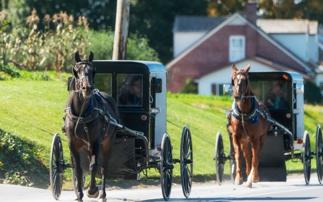 3 Reasons Why Technology Is Forbidden in the Amish