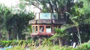 Tree house at Angelinos