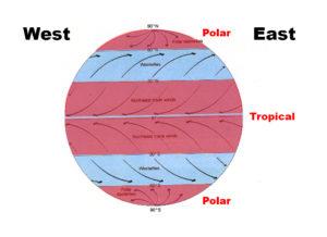 Subtropical High, Subpolar Low, Easterlies, Westerlies