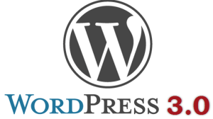WordPress 3.0 CMS Logo