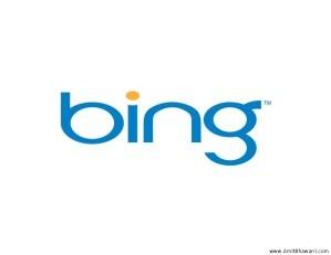 Bing Logo & Site Search Screenshots