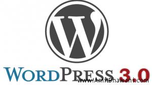Fix Wordpress 3.0 Images Error – Capital P Case Function