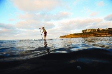 Terrenea Stand Up Paddle