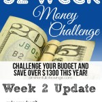 52 Week Money Challenge- Week 2