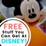 My Favorite Free Stuff You Can Get At Walt Disney World