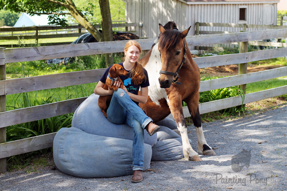 Ammo the Dachshund Helps Prepare for Pony Penning // Chincoteague Pony Boomerang