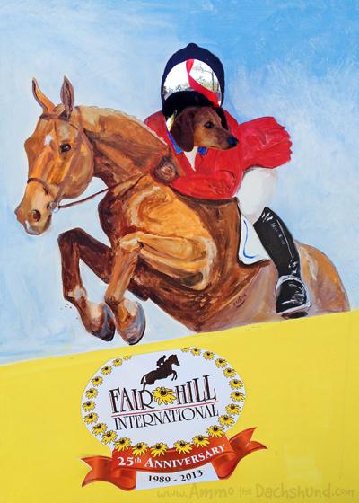 Fair Hill International with Ammo the Dachshund