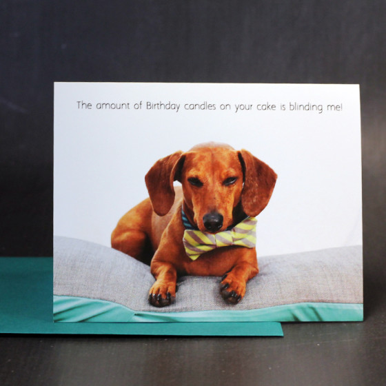 New dachshund greeting cards ammo the dachshund flying hero shop update dachshund greeting cards m4hsunfo