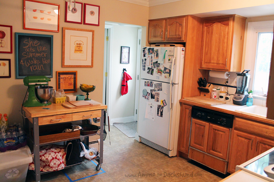 Pet Friendly Kitchen Renovation via Ammo the Dachshund