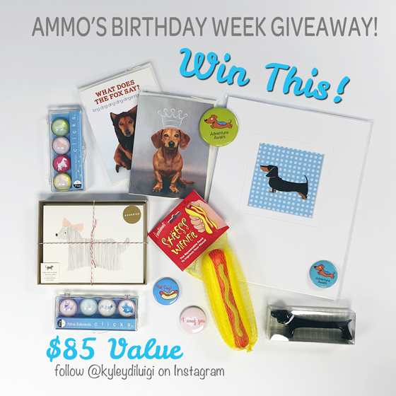 Birthday Week: Instagram Giveaway!