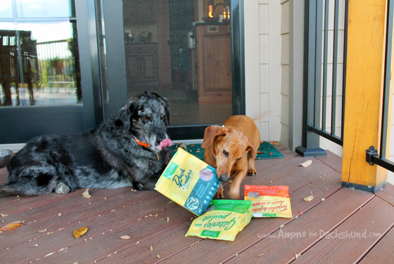 VitaLife All Natural Dog Treats Review + Giveaway