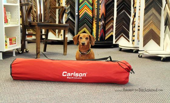 Carlson Pet Products Portable Pet PenCarlson Pet Products Portable Pet Pen