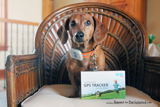 How the Trax GPS Tracker Can Make Life Easier