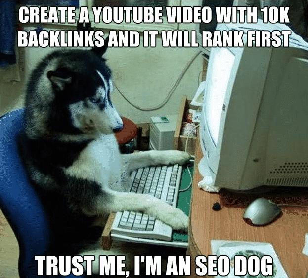 backlink-experiment-seo ميني كورس يوتيوب : جلب المشاهدات و الأرباح