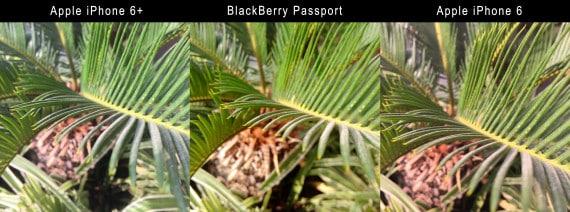 cam_test_2-570x212 مراجعة BlackBerry Passport: إبداع يا بلاك بيري
