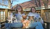 Kendra Peek/kendra.peek@amnews.com Wyatt and Gordon with Gordon's dogs, Beans, Emma, Biscuit and Peanut.