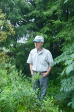 Jim Maender stands in the side yard of his home on Walnut Street, surrounded by hop horn bean plant, a hemlock tree and Devil's walking stick trees.