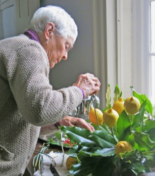 Kay Arnold puts the finishing touches on an arrangement of lemons and magnolia leaves for the dining room at a past tea. Citrus fruits were a treasured delicacy in McDowell's day. (Photo by Andrea Perkins)