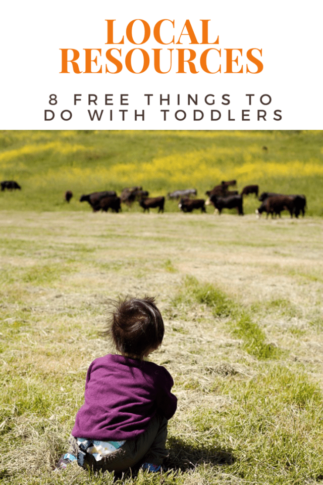 8 Free Things to do with Toddlers