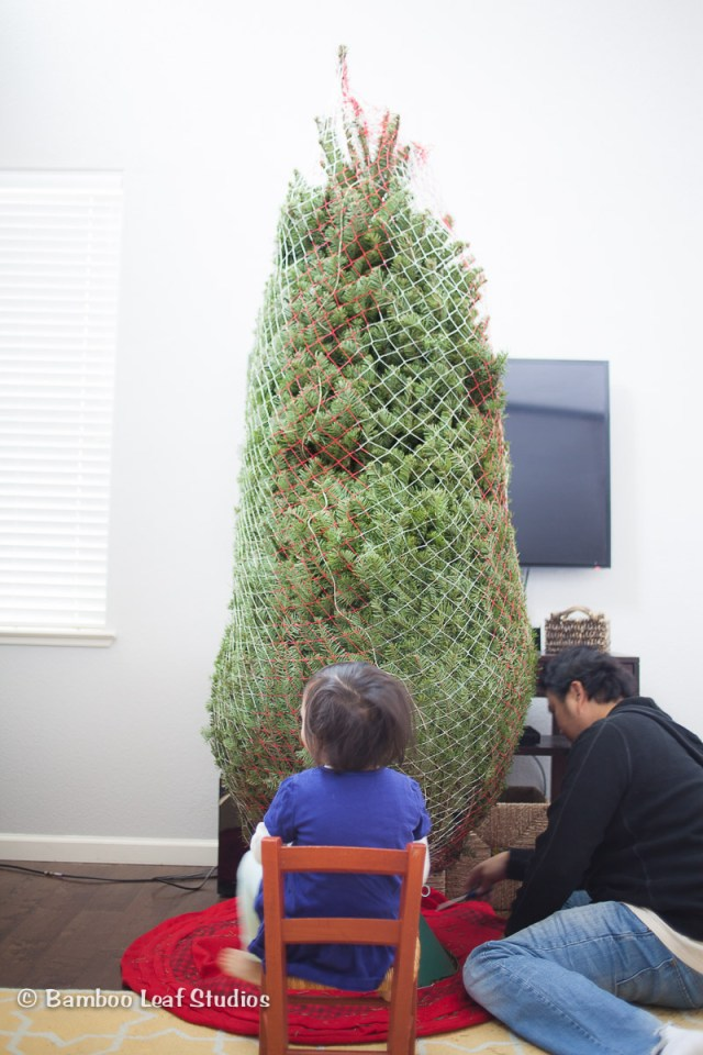 Christmas Tree Decorating