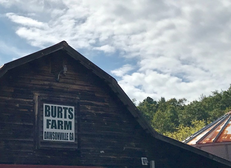 Family Fun around Atlanta - Burt's Farm