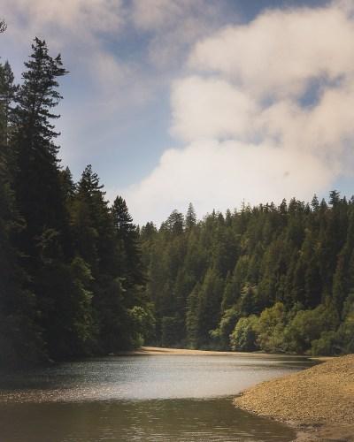 Gualala River Redwood Park Camping
