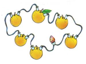 Percobaan Sains Sederhana Membuat Baterai Jeruk