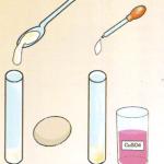 Percobaan Sains Sederhana Uji Protein dalam Makanan (Uji Biuret)