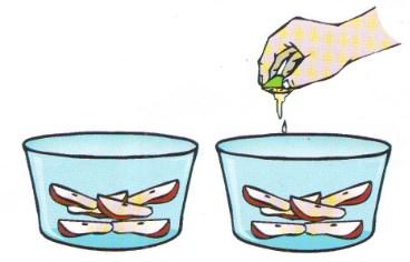 Percobaan Sains Sederhana Mengawetkan Buah Dengan Mudah