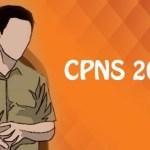 Hasil SKD dan Peserta Lulus SKB CPNS 2018 Kabupaten Bireuen