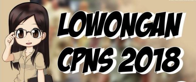 Jadwal Ujian Seleksi Kompetensi Bidang SKB CPNS 2018 Kabupaten Aceh Tengah
