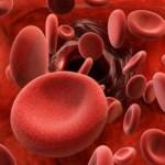 Ciri-Ciri Keping Darah (Trombosit), Fungsi, dan Proses Pembekuan Darah