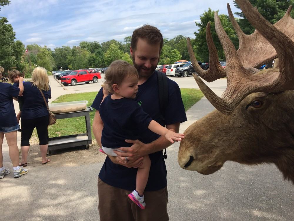 Not a real moose. They had a little area set up to show kids about the wild life.