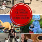 The Best Things to do at Animal Kingdom, with Toddlers.