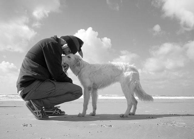 Risultato immagini per foto con cani e persone