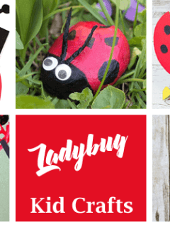 ladybug kid crafts - bug crafts for kids- ladybird insect - amorecraftylife.com #preschool #craftsforkids #kidscrafts