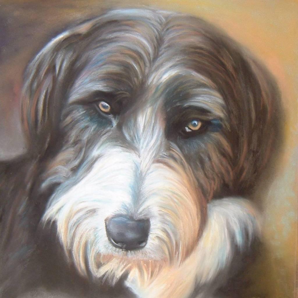 Dog portrait Fife artist Christopher Amos (Amosartworks)