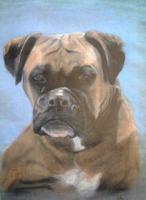Dog portrait in pastels uk artist