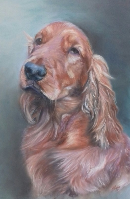 Cocker Spaniel in soft pastels