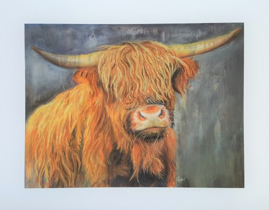 Highland cow print by Christopher Amos