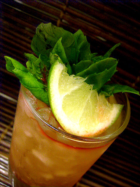 PLANTERS PUNCH – EIGHT VERSIONS OF A FAMOUS RUM DRINK – Rum, Tiki on